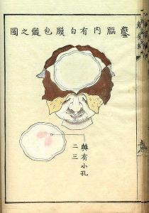 Kawaguchi Shinnin 1736_1811