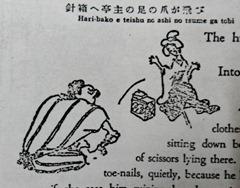 La uña del pie
